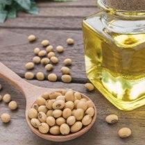 molochko-soybean-oil